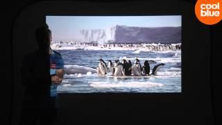 проектор Acer P1385W обзор