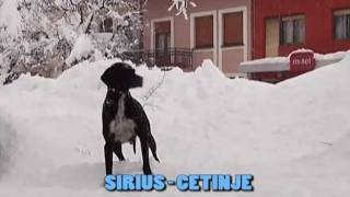 Snijeg - Cetinje // HD Digital Video SIRIUS - CETINJE - Tel. +38269 177775