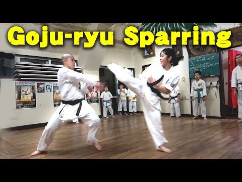 Goju-ryu Karate Sparring | Sport Kumite & Full Contact | スポーツ組手&フルコンタクト空手 | 沖縄伝統空手