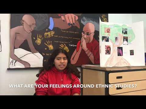Ethnic Studies edit #2