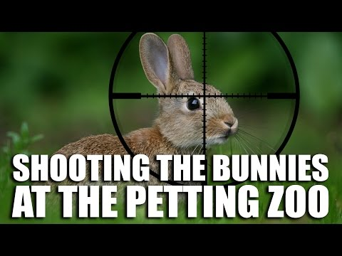Shooting the Bunnies at the Petting Zoo