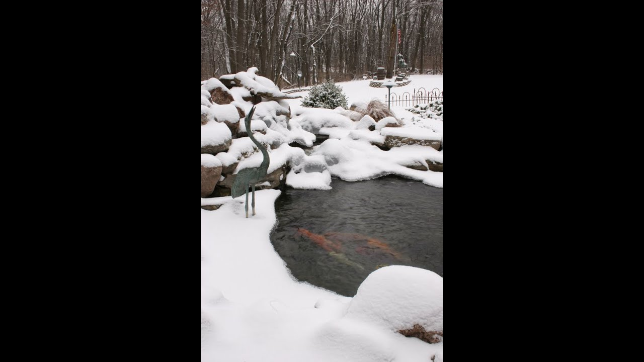 Winterizing your pond by atlantis water gardens in for Atlantis koi pond