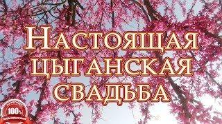 КРАСИВАЯ ЦЫГАНСКАЯ СВАДЬБА. Николай и Алёна, часть 3