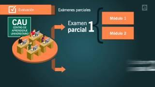Evaluación // Modulo 0 // Universidad Siglo 21