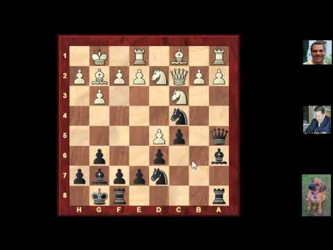 Nigel Short - Chess Grandmaster at Gibraltar 2013 (Chessworld.net)