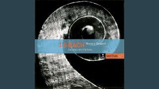 Violin Sonata No. 2 in A Minor, BWV 1003: IV. Allegro