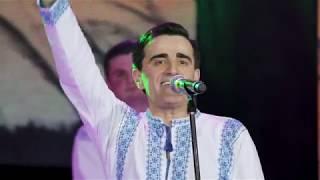 Nicolae Gribincea - Foaie verde grâu mărunt