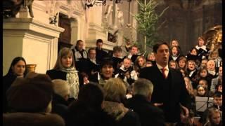 Il mio primo angelo - Martino Hammerle Bortolotti - Detto Mariano