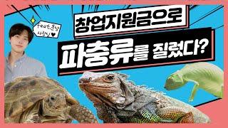 정부창업지원금으로 파충류를 지르면 생기는 일 (feat…
