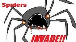 When Spiders Invade your house!! HowTo Catch, Study & release.