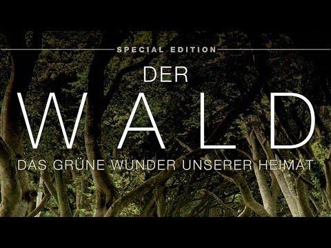 Der Wald - Das grüne Wunder unserer Heimat 2012 Dokumentation | Film deutsch
