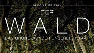 Der Wald - Das grüne Wunder unserer Heimat (2012) [Dokumentation] | Film (deutsch)