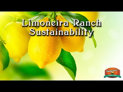 Limoneira Sustainability   Totally Local VC