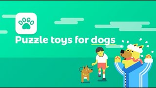DIY puzzle toys for your dog