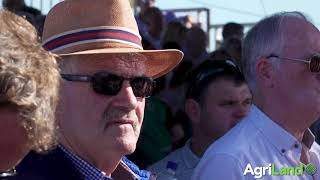 National Ploughing Championships 2019: Highlights from day 3