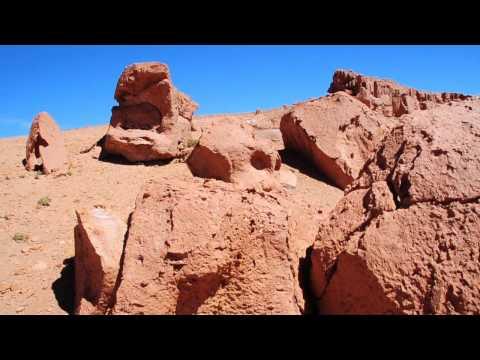 San Pedro de Atacama Reserva Nacional Los Flamencos - Chile 365 - turismo en Chile