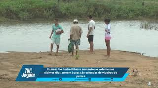 Rio Pedro Ribeiro aumentou o volume nos últimos dias, porém águas são oriundas de viveiros de peixes