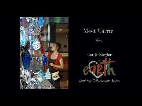 Carrie Ziegler, Collaborative Artist