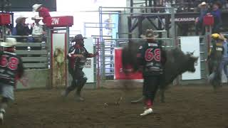Matt Triplett rides Tykro Total for 84 points (PBR)