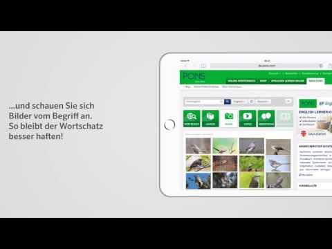 Intelligentes Online-Wörterbuch | PONS