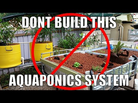Aquaponic System Design Mistakes | Don't Copy Me