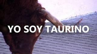 Repeat youtube video TOROS SIETEIGLESIAS DE TRABANCOS  II Toro del Arrope 2012