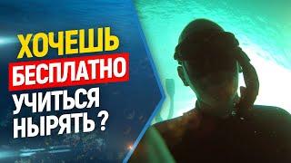Бесплатные уроки по фридайвингу и подводной охоте! Халява! Фридайвинг бесплатно!