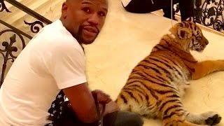 The Most OUTRAGEOUS and EXOTIC Celebrity Pets!
