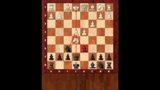Основы шахмат 7. Основы дебюта. Королевский гамбит