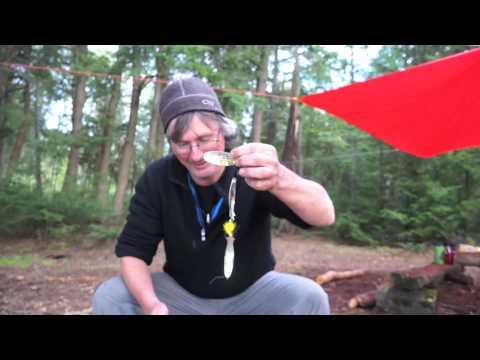 Algonquin Big Trout Lake - Warbler Lake Trip - Part 1