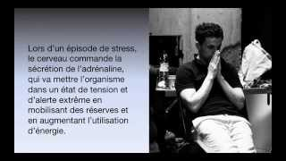 Spoc Gestion du stress -  Extrait