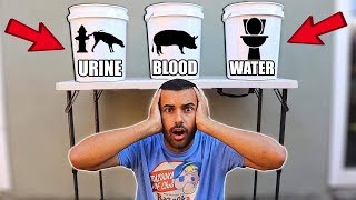 WHICH WOULD YOU CHOOSE 😱  DON'T PICK THE WRONG BUCKET CHALLENGE!!