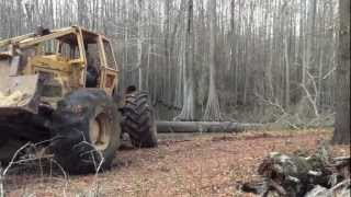 Skidding Out a Big Oak Tree!  Caterpillar 518 Skidder Logging