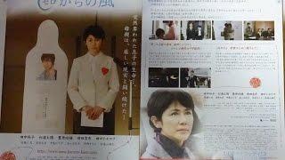 0(ゼロ)からの風 2007 映画チラシ 2007年5月12日公開 【映画鑑賞&グ...