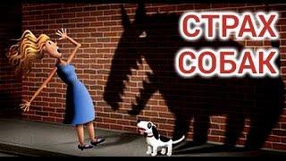 Как побороть страх собак - советы психолога