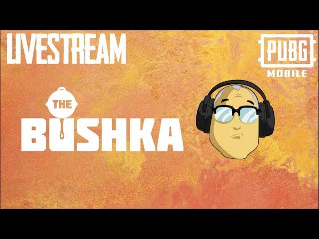 BECOME A PUBG HERO BUSHKAS PUBLIC CUSTOM ROOMS LIVE!