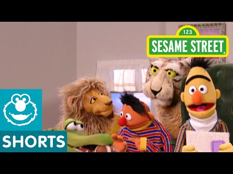 Sesame Street: In Bert's Book