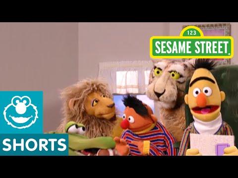 Sesame Street: In Bert's Book