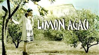 Limon Ağacı (Jenerik)