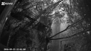 Камера EZVIZ C3S. Ночь, отключение ИК подсветки.(Компания EZVIZ мировой лидер в области систем видео наблюдения, выпустила на рынок новую, компактную уличную..., 2016-09-24T08:54:38.000Z)