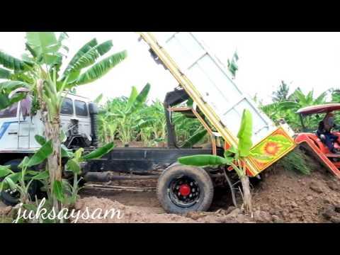 ถมดินในป่ากล้วย  รถ 6 ล้อขนดิน  เทดิน  รถดั้ม รถบรรทุกหนัก  dump truck