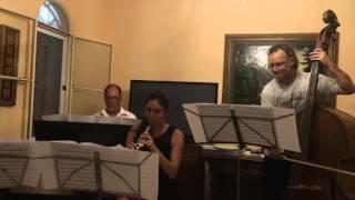 Bachianas Brasileiras No. 5: Villa-Lobos Heitor / Arr: Hanspeter Reimann