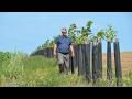 Un agriculteur engagé en agro-écologie, Marc Lefebvre à Guînes