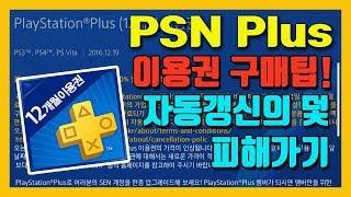 Playstation Plus(PSN Plus) 구매팁…