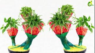 HAND MADE CEMENT POT/cement planter ideas//ORGANIC GARDEN