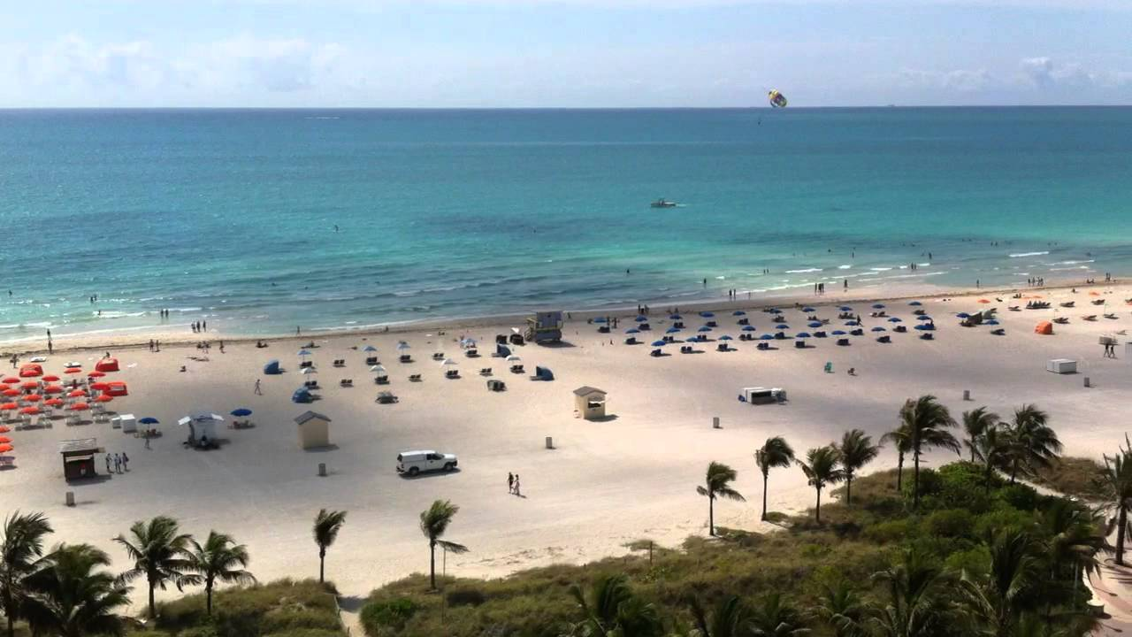 South Beach Miami Old Royal Palm Room View Now James Hotel Loews Next Door You