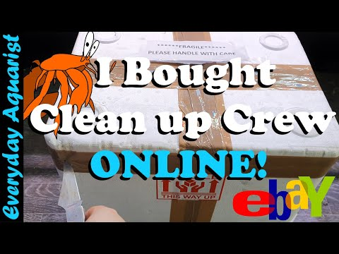 BUYING Marine Clean up Crew ONLINE, Here's How It Turned Out