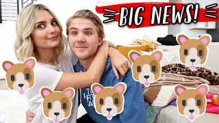 VERY EXCITING ANNOUNCEMENT!!! 🐶VLOGMAS DAY 4!