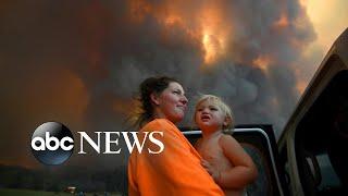 Bushfires in Australia, Veterans Day, clashes in Baghdad: World in Photos, Nov. 12