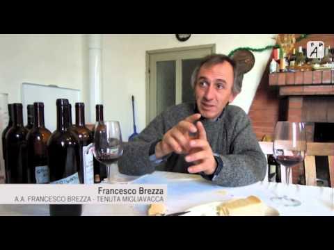 Intervista con Francesco Brezza di Tenuta Migliavacca